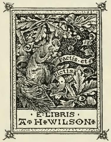 Pictorial Design. A. H. Wilson, Esq.